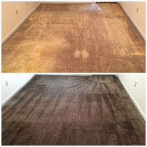 Carpet Dyeing Atlanta